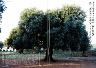 Puglia03.jpg